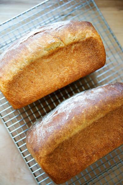 Dos panes de brioche recién horneados en una rejilla para enfriar.