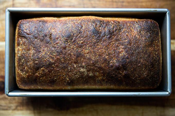 Pan sándwich de masa madre, recién horneado, aún enfriándose en un molde para pan.