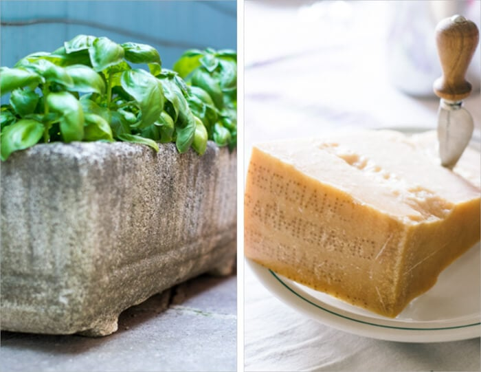 Parmigiano-Reggiano y albahaca para Tartine Bruschetta
