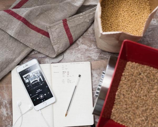 grano de molienda de masa madre de trigo integral recién molido