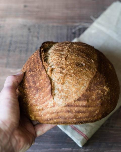 Corteza de trigo integral al cincuenta por ciento