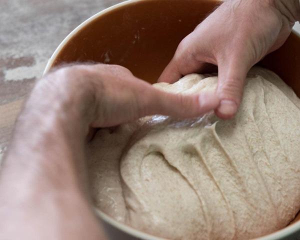 Fermentación a granel de trigo integral