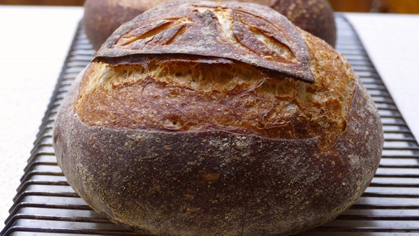 Pan de masa fermentada para caminar Masa fermentada del